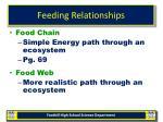 feeding relationships17