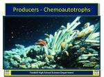 producers chemoautotrophs