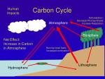 carbon cycle10