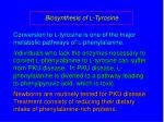 biosynthesis of l tyrosine25