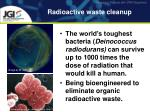 radioactive waste cleanup