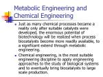 metabolic engineering and chemical engineering