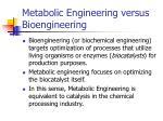 metabolic engineering versus bioengineering