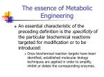 the essence of metabolic engineering