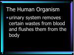 the human organism15