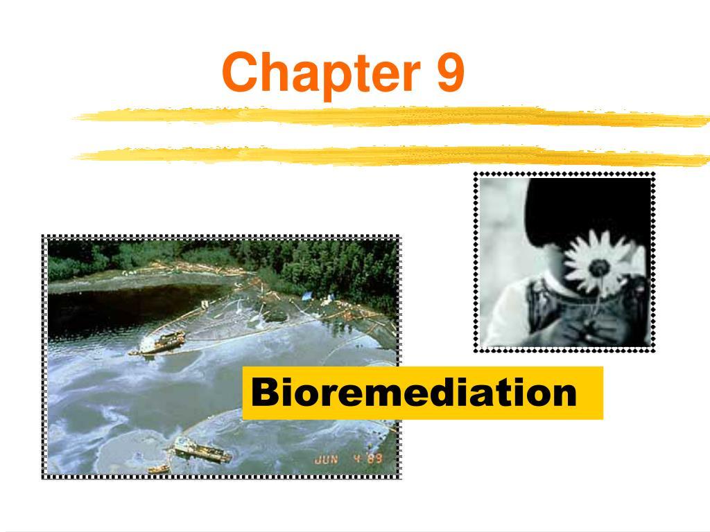 bioremediation l.