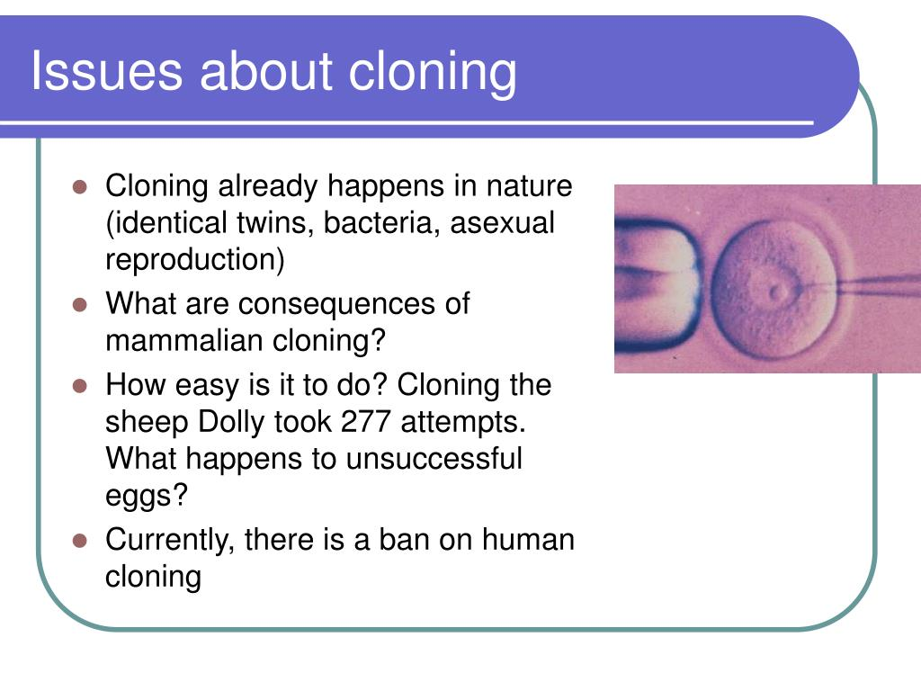 Issues about cloning