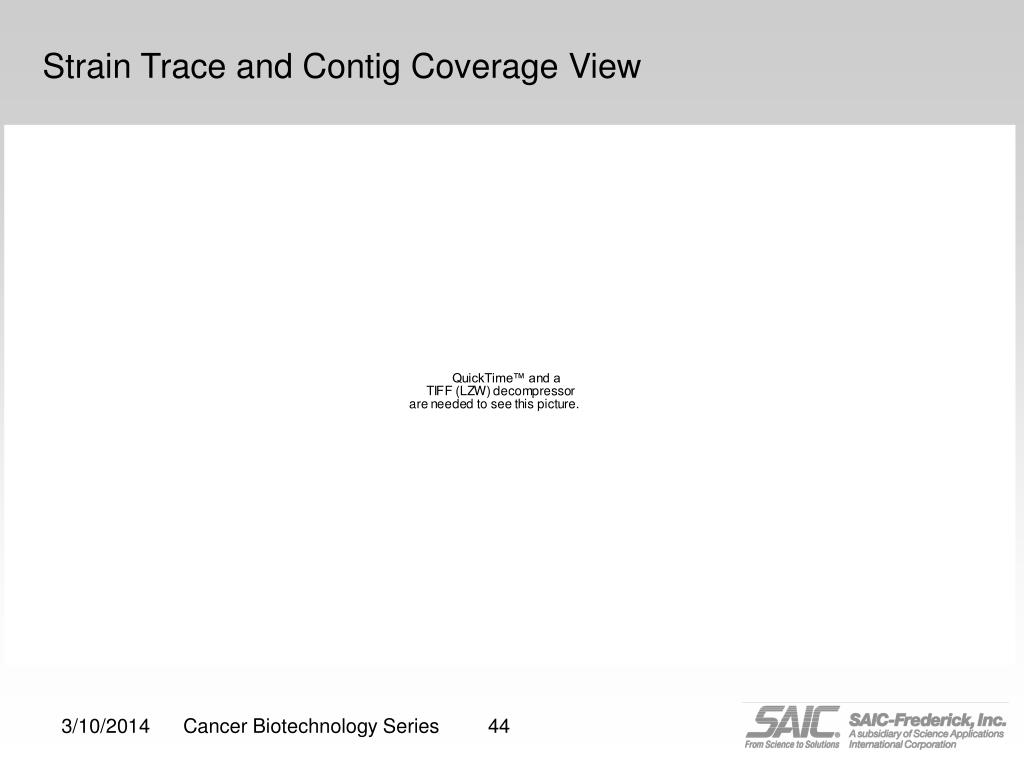 Strain Trace and Contig Coverage View
