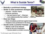 what is suicide terror
