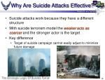 why are suicide attacks effective28