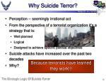 why suicide terror
