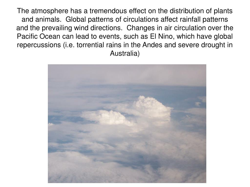 The atmosphere has a tremendous effect on the distribution of plants and animals.  Global patterns of circulations affect rainfall patterns and the prevailing wind directions.  Changes in air circulation over the Pacific Ocean can lead to events, such as El Nino, which have global repercussions (i.e. torrential rains in the Andes and severe drought in Australia)