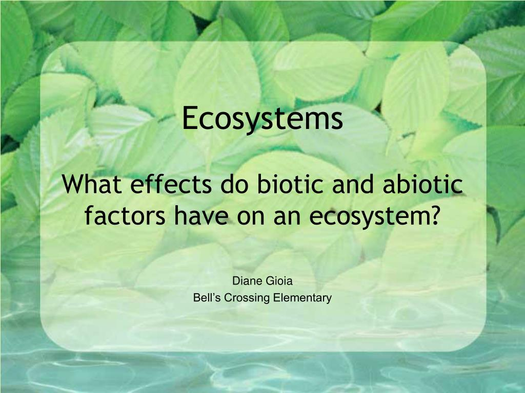ecosystems what effects do biotic and abiotic factors have on an ecosystem l.