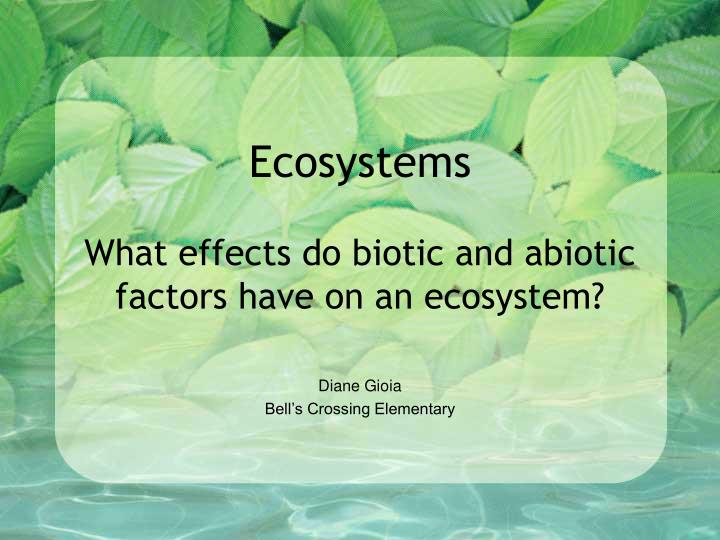 ecosystems what effects do biotic and abiotic factors have on an ecosystem n.