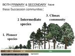 both primary secondary have these succession communities