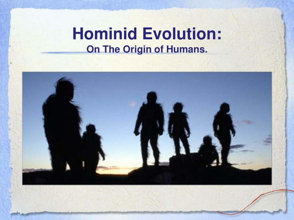hominid evolution on the origin of humans l.