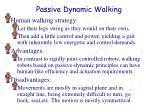 passive dynamic walking