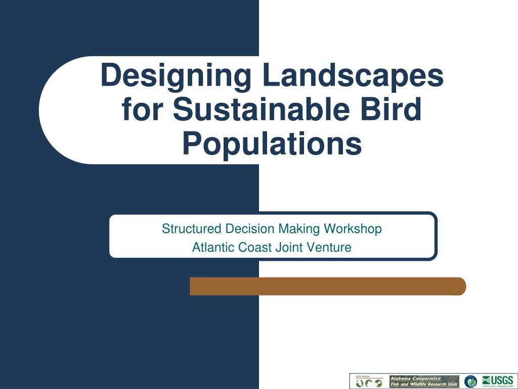 designing landscapes for sustainable bird populations l.