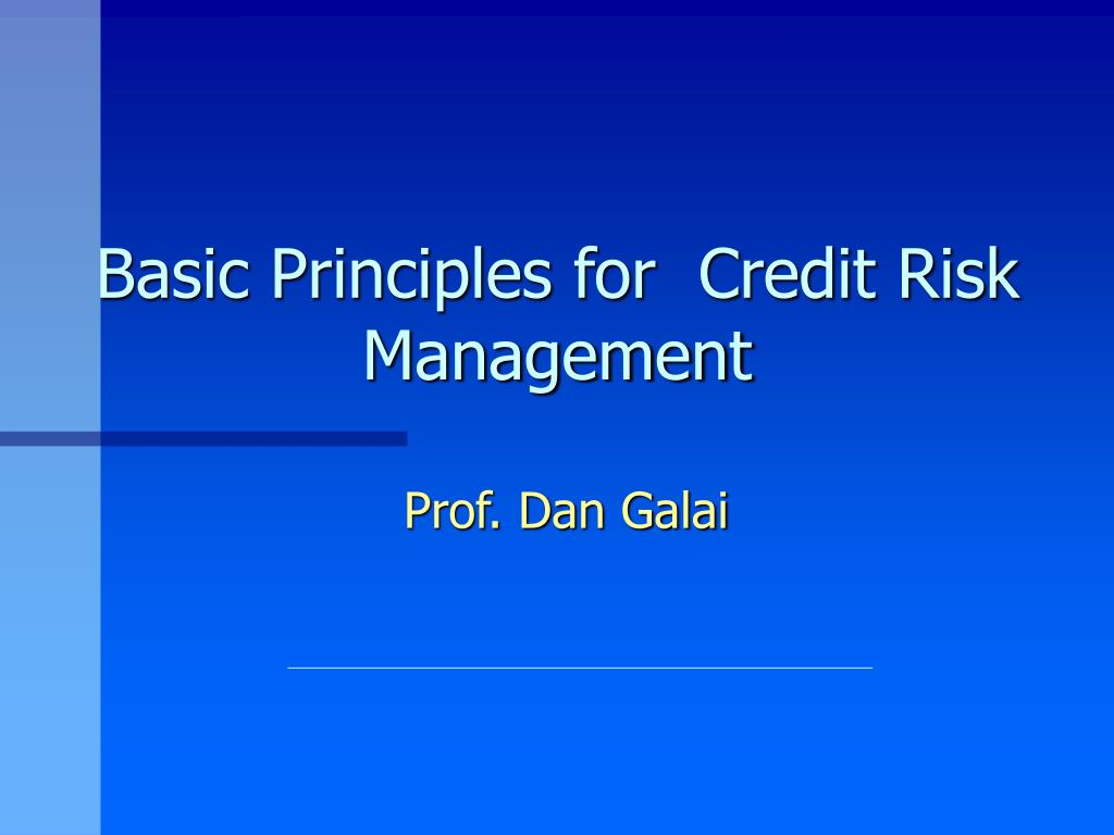 basic principles for credit risk management l.