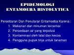 epidemologi entamoeba histolytica