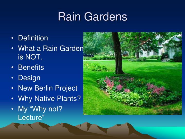 Rain gardens3