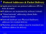 protocol addresses packet delivery