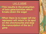 lac z gene17