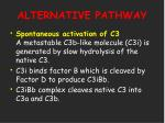alternative pathway17