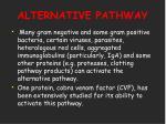 alternative pathway24