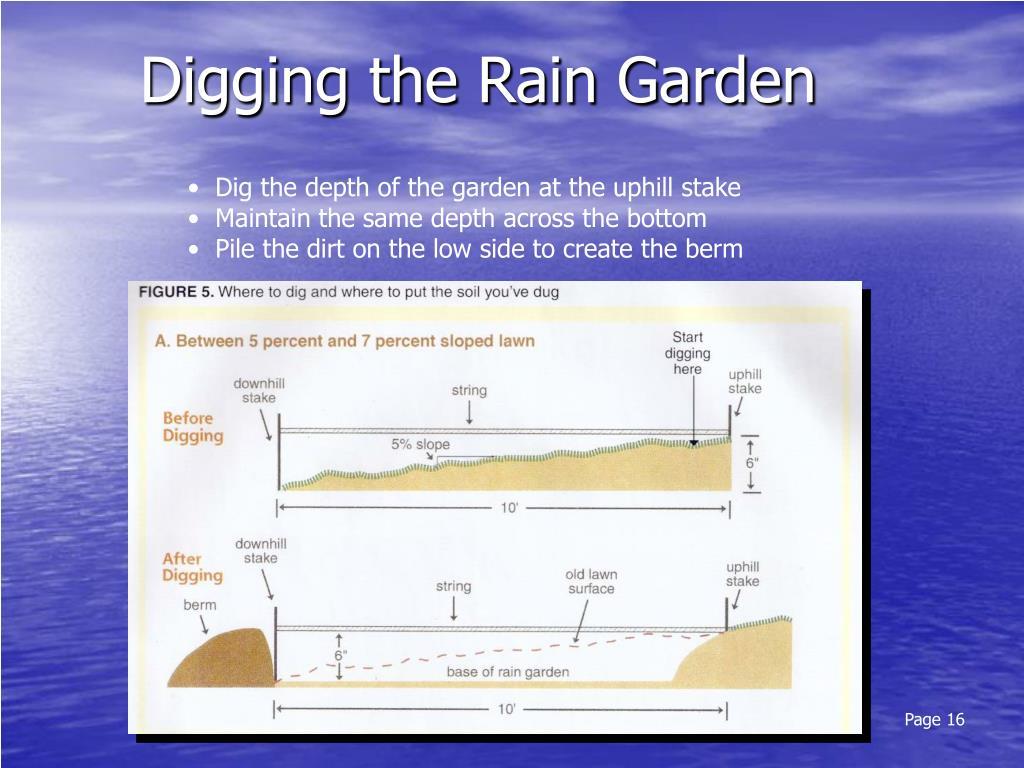 Digging the Rain Garden