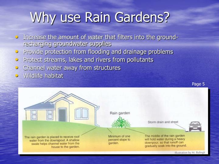 Why use rain gardens