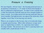 pressure freezing