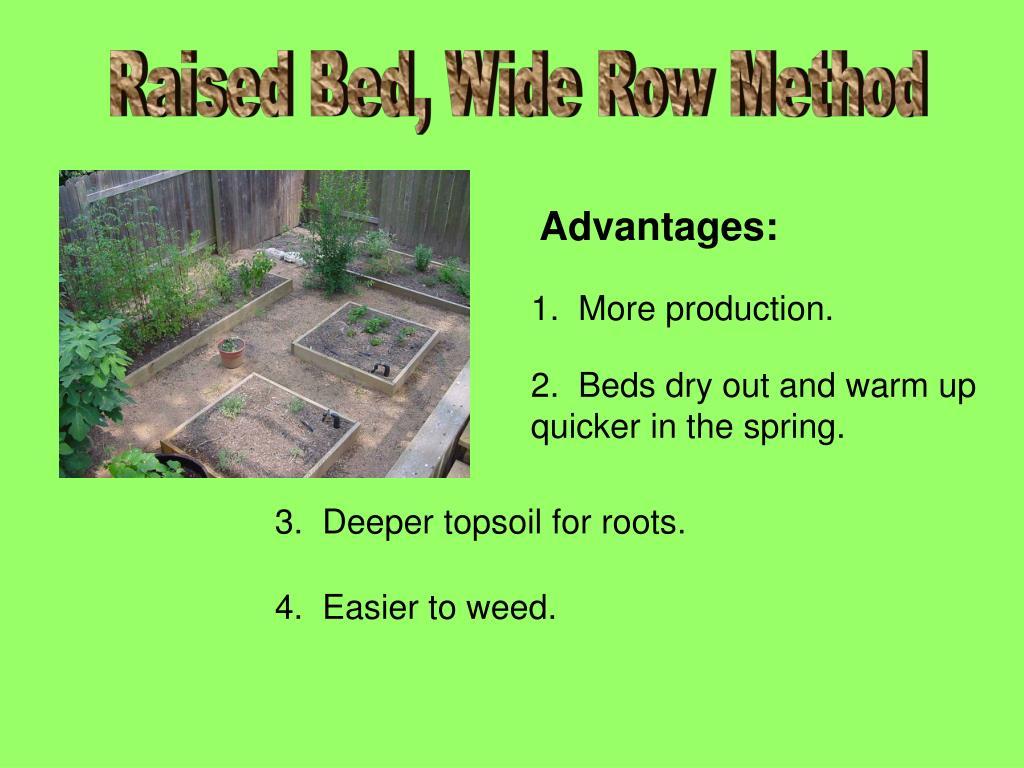 Raised Bed, Wide Row Method