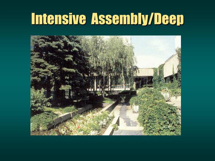 Intensive  Assembly/Deep