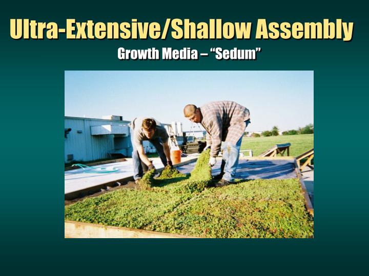 Ultra-Extensive/Shallow Assembly