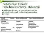 pathogenesis theories false neurotransmitter hypothesis31