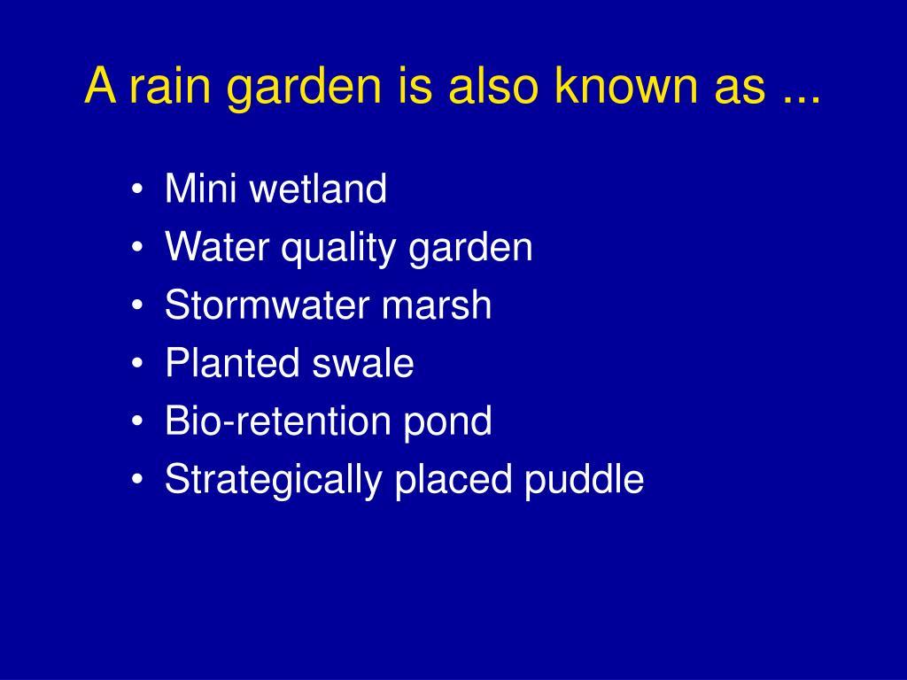 A rain garden is also known as ...