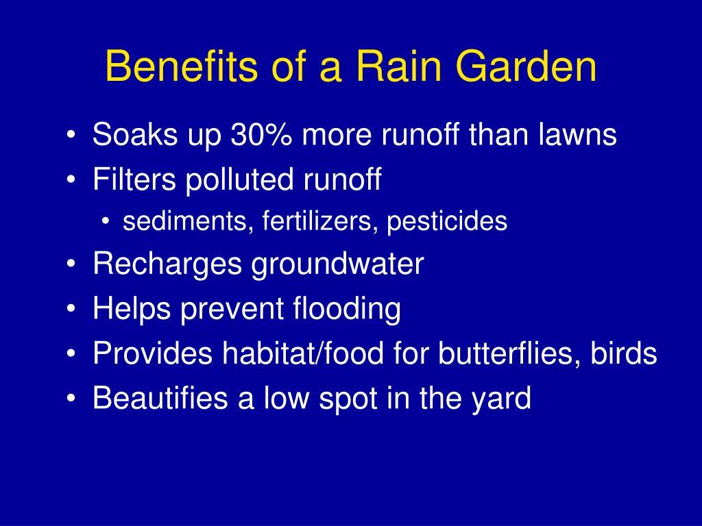 Benefits of a Rain Garden