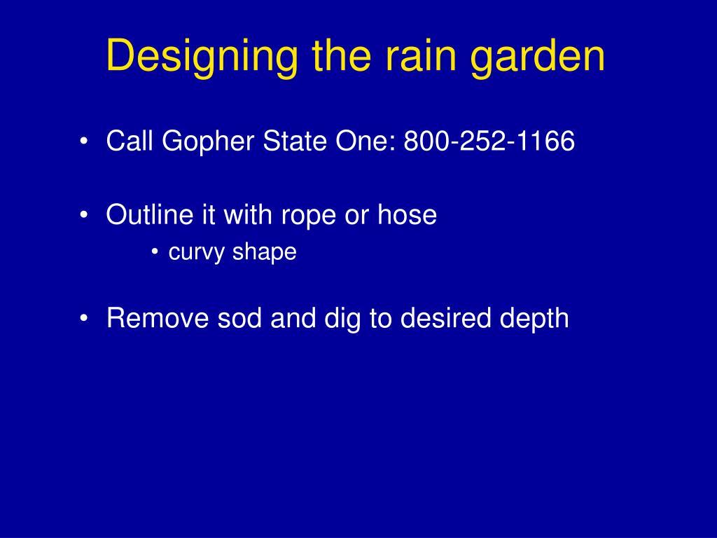 Designing the rain garden