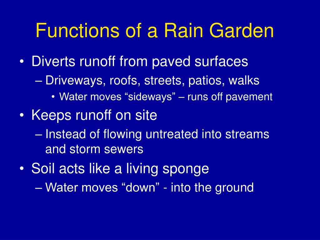 Functions of a Rain Garden