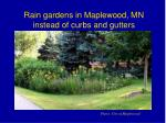 rain gardens in maplewood mn instead of curbs and gutters