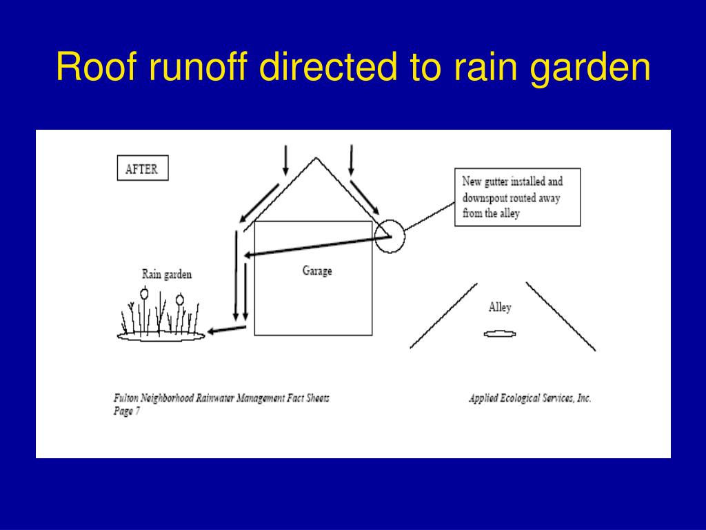 Roof runoff directed to rain garden