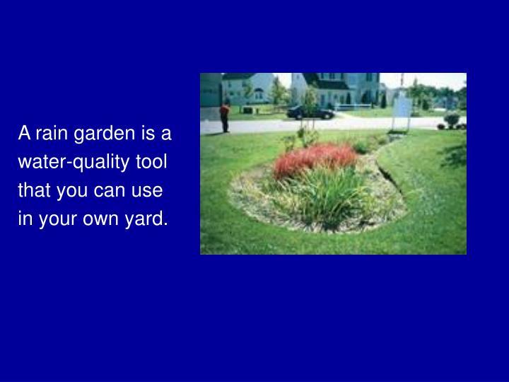 A rain garden is a