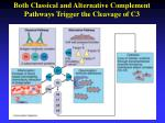 both classical and alternative complement pathways trigger the cleavage of c3