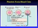 platelets form blood clots
