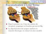 potentialisation long terme