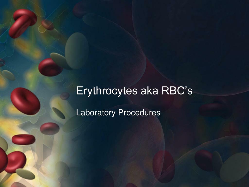 erythrocytes aka rbc s l.