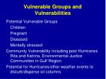 vulnerable groups and vulnerabilities