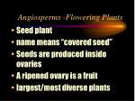 angiosperms flowering plants