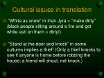 cultural issues in translation